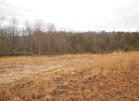 Land for Sale in Hart County, KY Detweiler 10