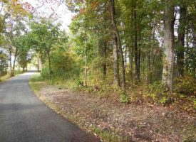 Hunting Land for Sale in Edmonson County, KY Whalen 10