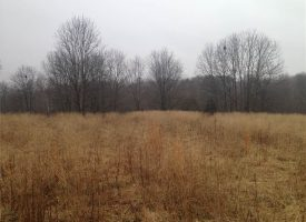 18 acres of great farm and hunting land