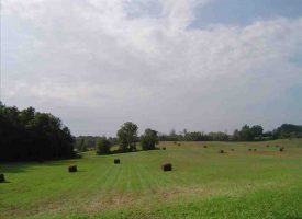 Timber Land for Sale in Hart County, KY- Eden 60