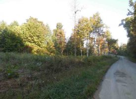 Hunting Land for Sale in Hart County, KY Gt Warren 33.25