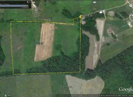 Hunting Land for Sale in Metcalfe County, KY Mounts 35