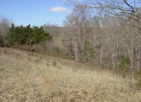 18.76+/- Ac Recreational land for sale Green Co., Dotson 18.76