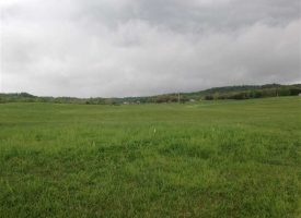 185 Prime Farm land for Sale in Bonnieville Kentucky