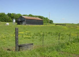87 acres Horses and Cattle Farm