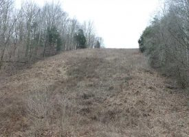 Chestnut Grove Rd 106 Acres