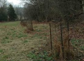 Hunting Retreat on 31 acres of Prime Hunting In South Central Kentucky