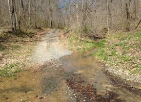 Dutch Creek Rd 208