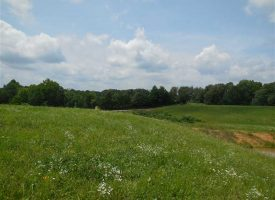 Davis 20.4 Acres — Tracts 4, 6 & 7 — Hilltop homesite with barn and ponds