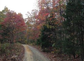 Tract 1 – 27.7 Acres private acres