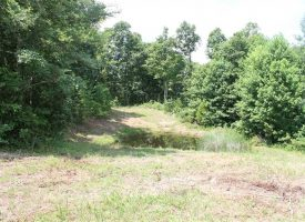 Tract 2 – 26.5 Private Acres