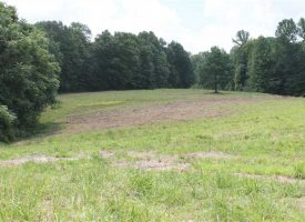 Tract 4 – 15.9 Private Acres
