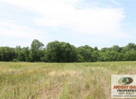 70 Acres Riverfront cropland or homesite