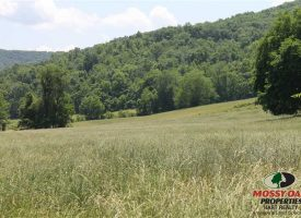 Outdoors-men's paradise – 186 Acres – Clinton County, KY