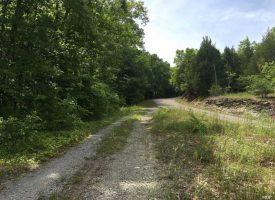 24 Acres wooded hunting land – Metcalfe County, KY