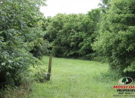 74 Acres – Ready to be your new farm – Hart County, Kentucky