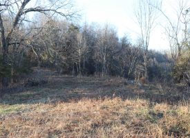 51 acres of Farm & Hunting Land