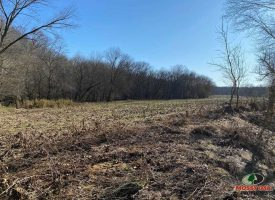 456 Acres of River frontage hunting and farming property