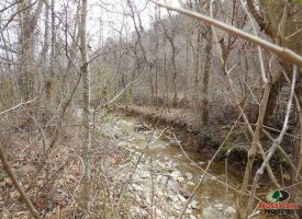 29 acres of hunting getaway property
