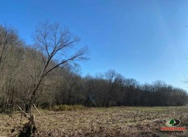 272 Acres of River Front Property