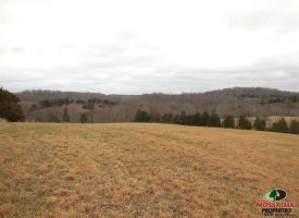 79 acres of Country Living