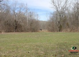104 Acres of Hunting Ground with Cabin