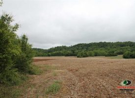 107 Acres of row Crops and more