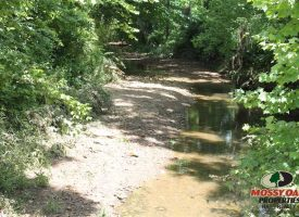 27 Acres – Grayson County, KY