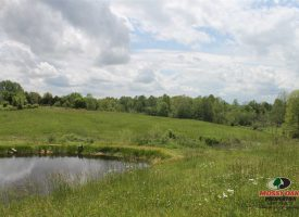 9 ACRES WITH POLE BARN HOME