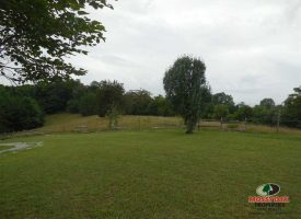 12 acres with Home in Country