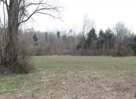 435 Acres – Hunting Retreat