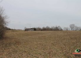 49 Acres of Crops and Hunting