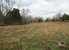 80 acres with river frontage