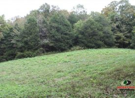 SOLD!! 402 acres of Rolling Hill of Kentucky and Tennessee