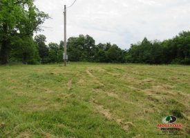 112 Acres of rolling land with open fields