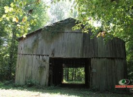 SOLD!! 60 acres of Kentucky Hunting land